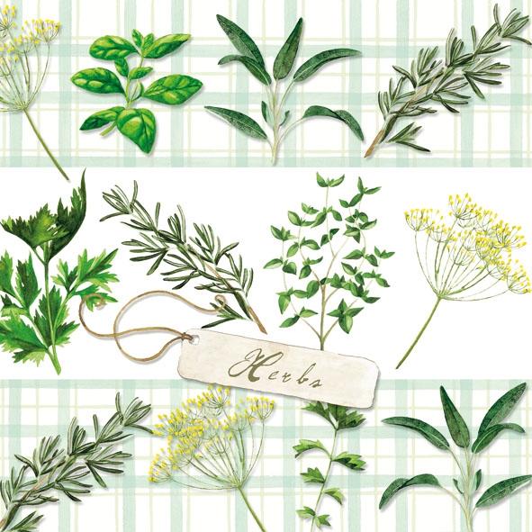 Napkins 33x33 cm - Herbs