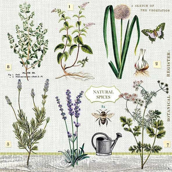 Napkins 33x33 cm - Herbs Garden