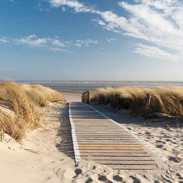 Serviettes 33x33 cm - Walking To The Sea
