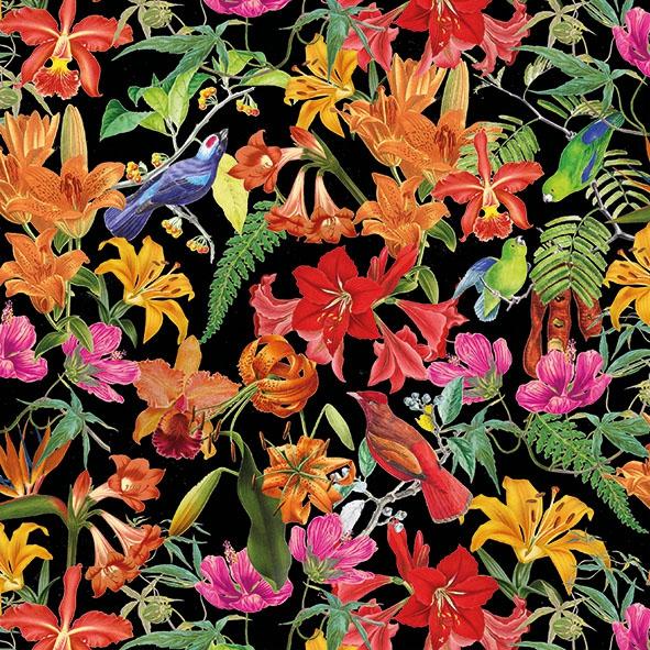 Serviettes 33x33 cm - Paradise Birds Black