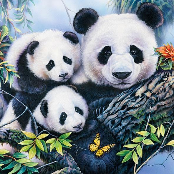 Napkins 33x33 cm - Panda