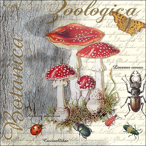 Napkins 33x33 cm - Fly Agaric And Beetle