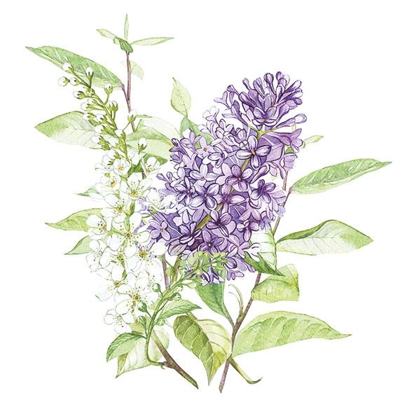 餐巾33x33厘米 - Lilac White