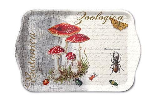 tray - Fly Agaric And Beetle