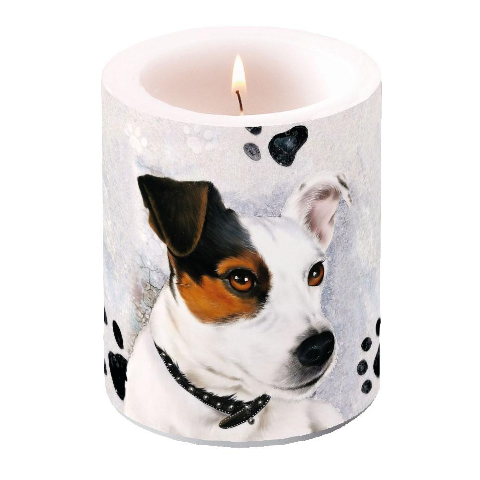 vela decorativa - Jack Russel