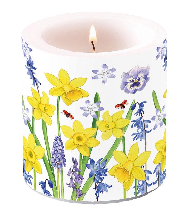 Bougie décorative petite - Narcissus Love