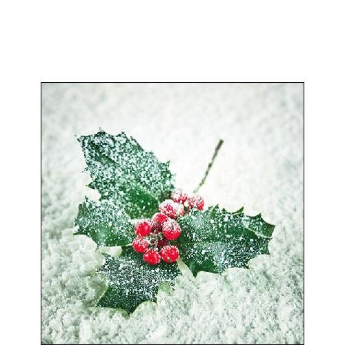 Napkins 25x25 cm - Frozen Ilex
