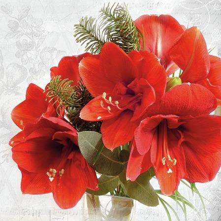 Serwetki 25x25 cm - Amaryllis