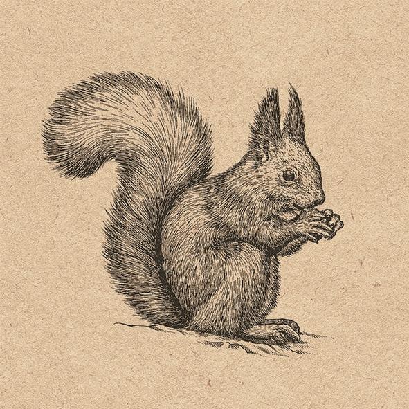 Servilletas 33x33 cm - Recycled Etching Squirrel