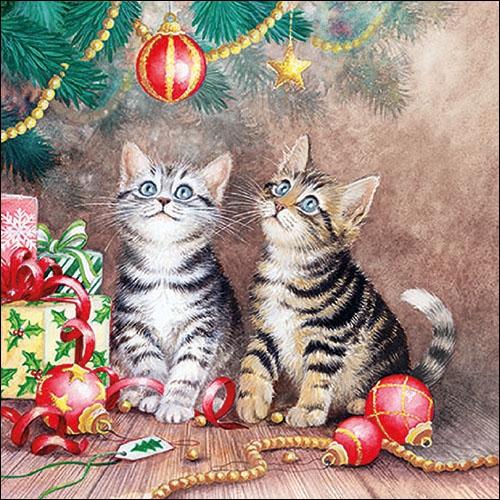 Serwetki 33x33 cm - Magic Of Christmas