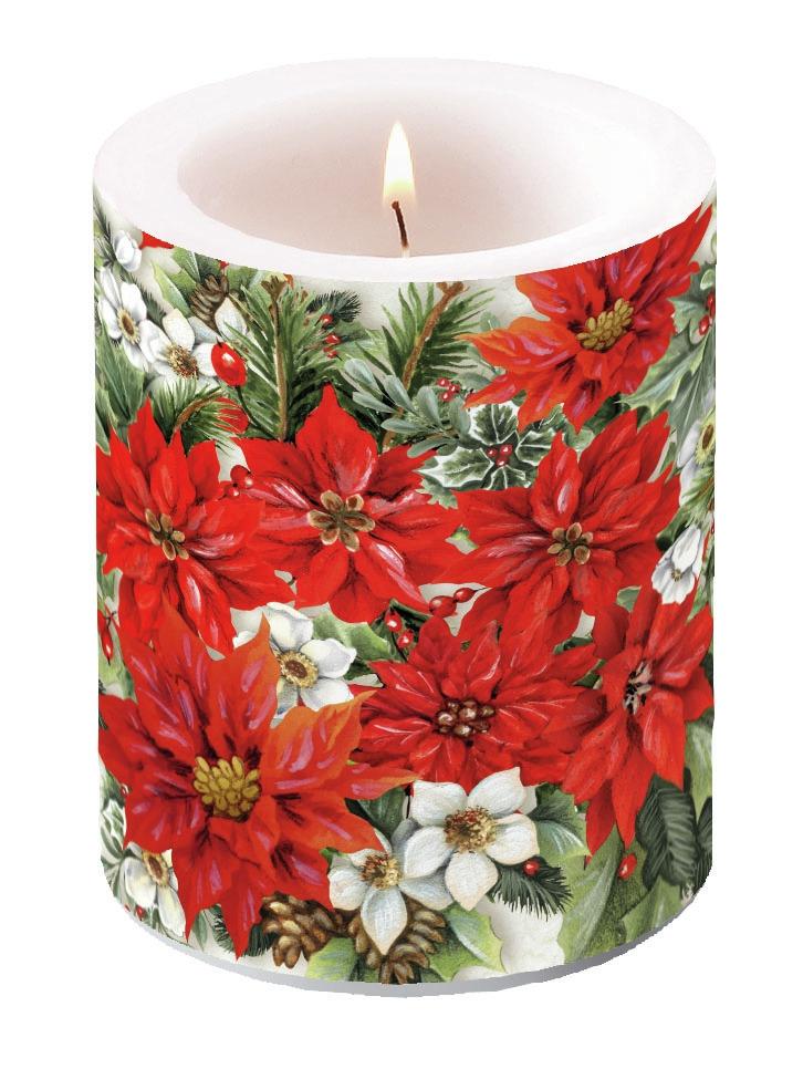 świeca dekoracyjna - Poinsettia All Over