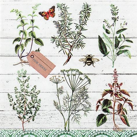 餐巾33x33厘米 - Floral Study