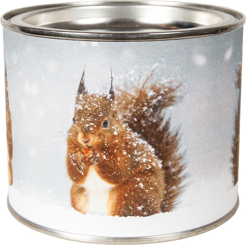 Duftkerze - Snowy Squirrel 100 mm