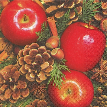 Napkins 25x25 cm - Apples with Nuts