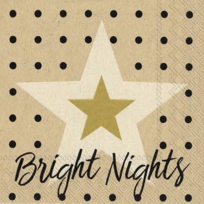 Napkins 25x25 cm - bright nights