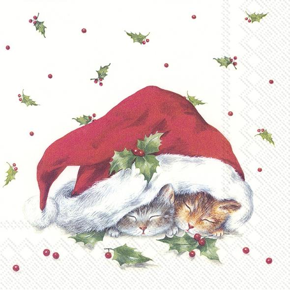 Napkins 33x33 cm - SWEET CHRISTMAS CATS