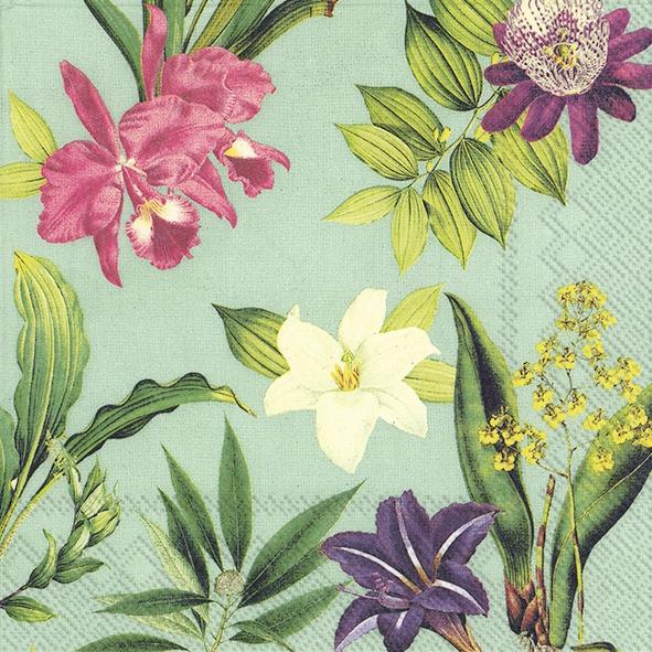 Napkins 33x33 cm - FLOWERS OF PARADISE mint
