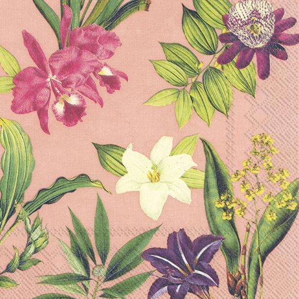 Napkins 33x33 cm - FLOWERS OF PARADISE apricot