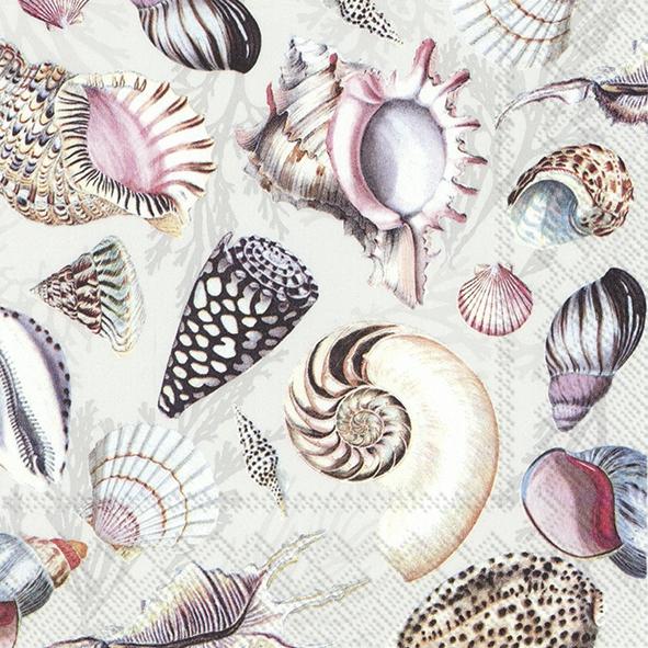 Serwetki 33x33 cm - SHELLS OF THE SEA nature