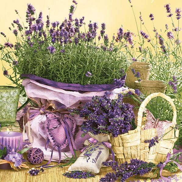 Tovaglioli 33x33 cm - Scent of Lavender