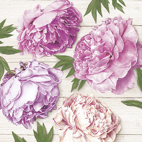 Serwetki 33x33 cm - Romantic Peonies on White Wood