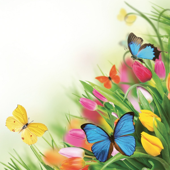 Servilletas 33x33 cm - Tulips & Butterflies