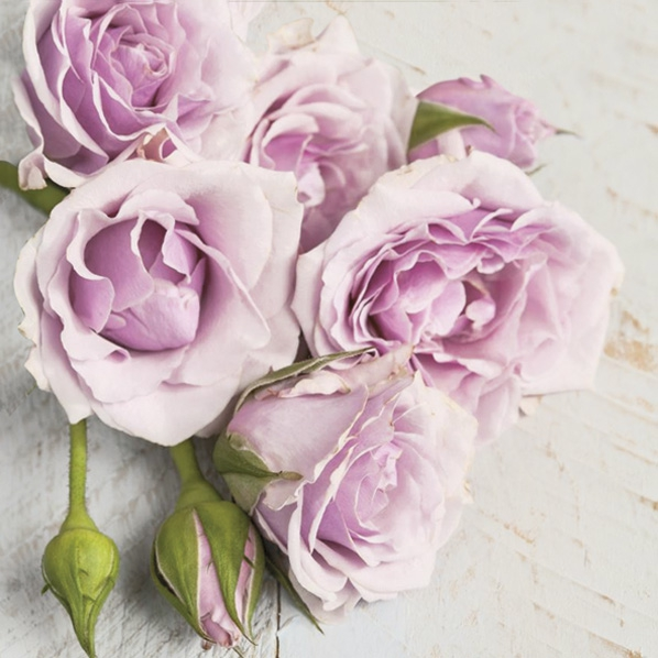 Servilletas 33x33 cm - Light Pink Roses with Buds