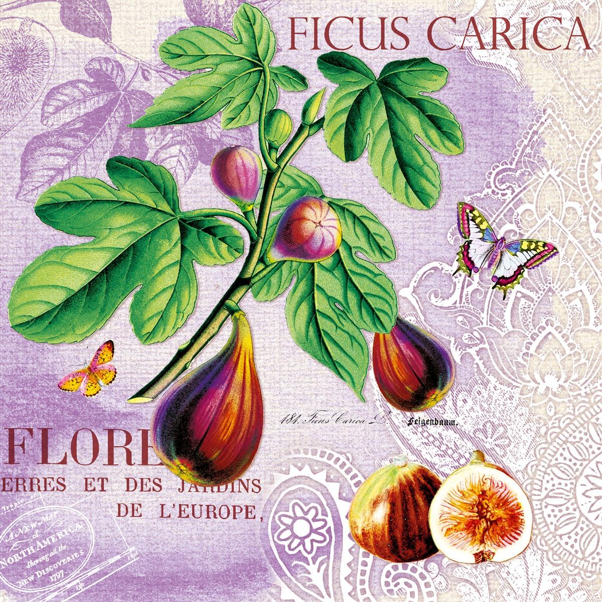 Napkins 33x33 cm - Ficus Carica