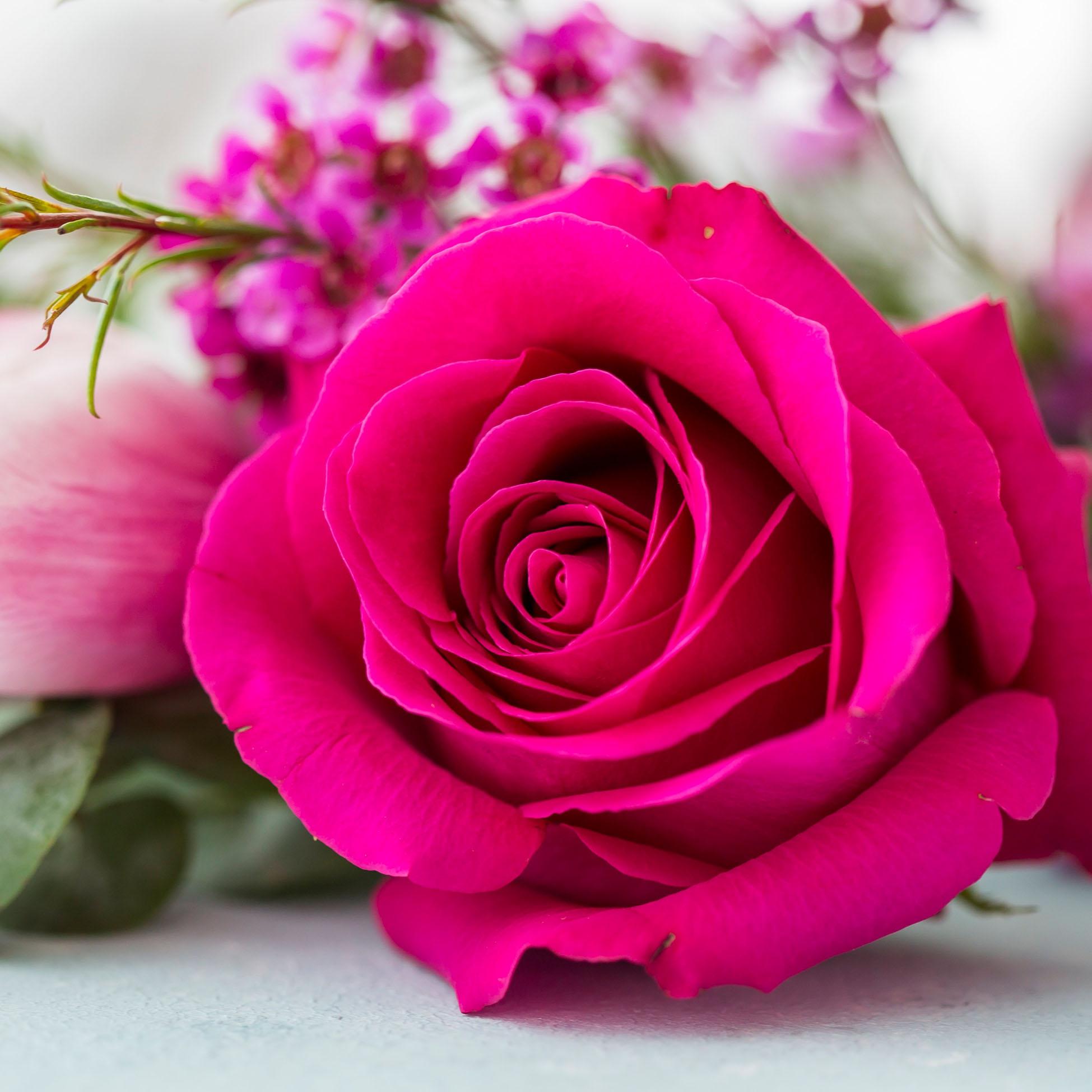 Napkins 33x33 cm - Rose Blossom