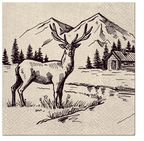 Napkins 33x33 cm - We Care Mountain View