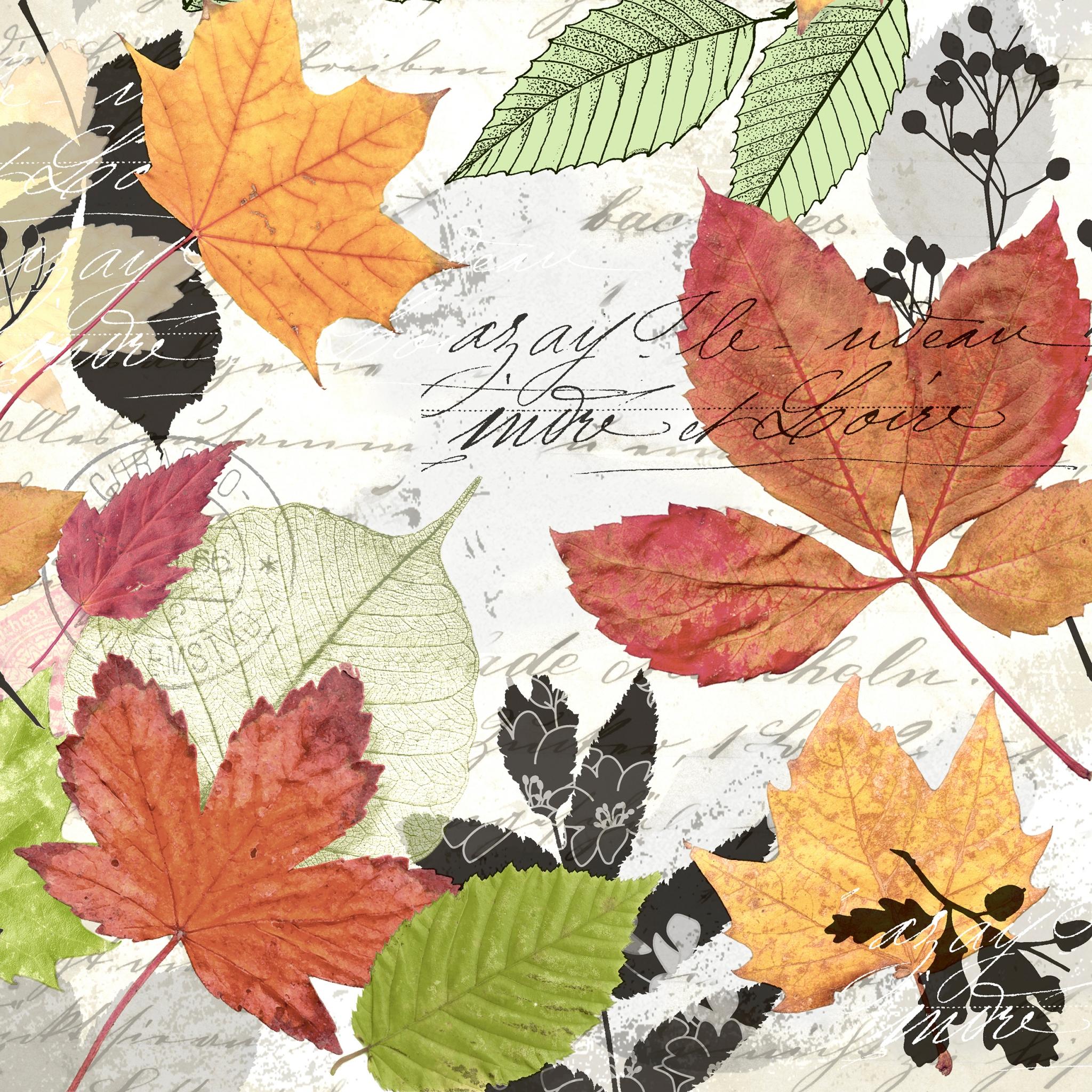 Napkins 24x24 cm - Herbarium