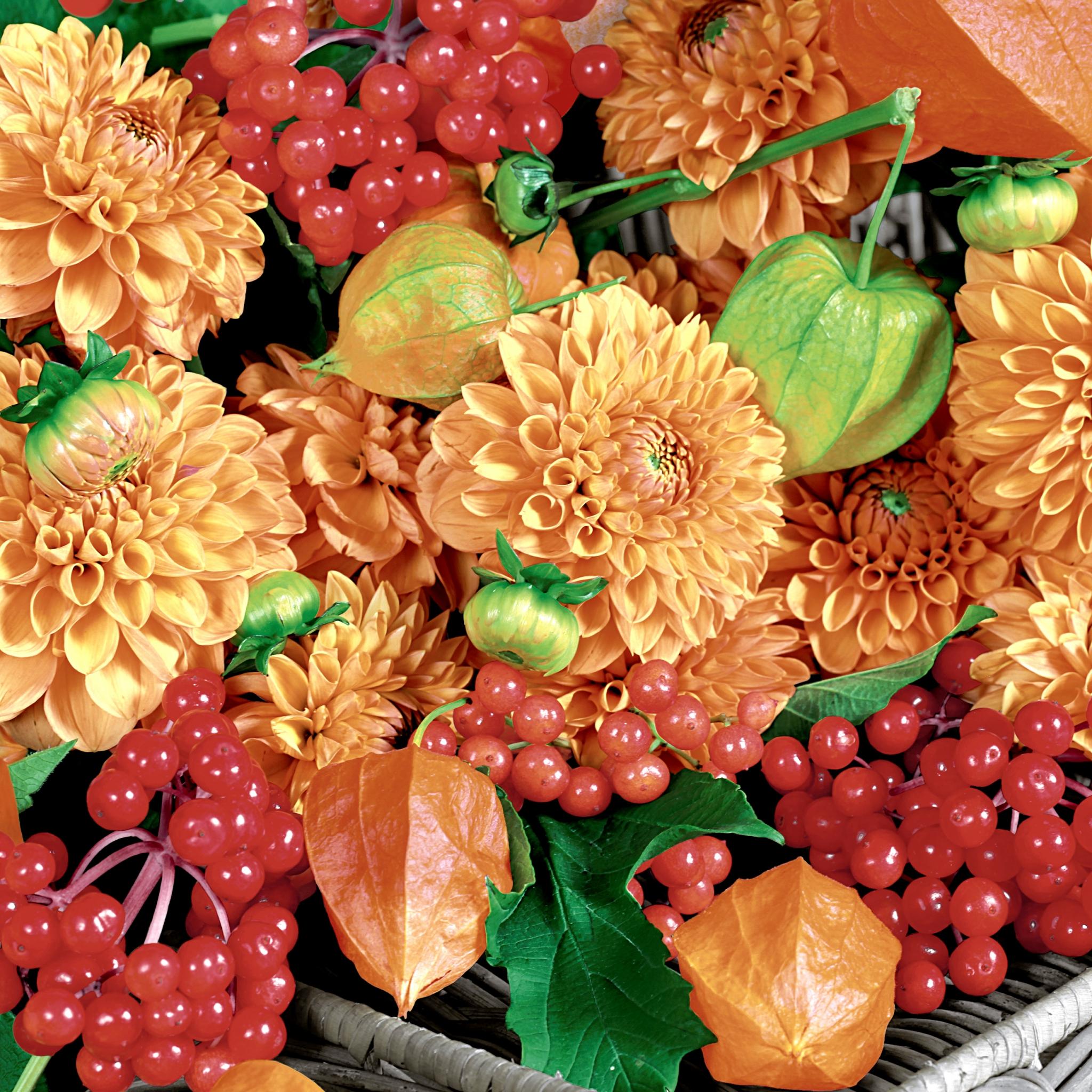 Servilletas 24x24 cm - Flowers & fruits