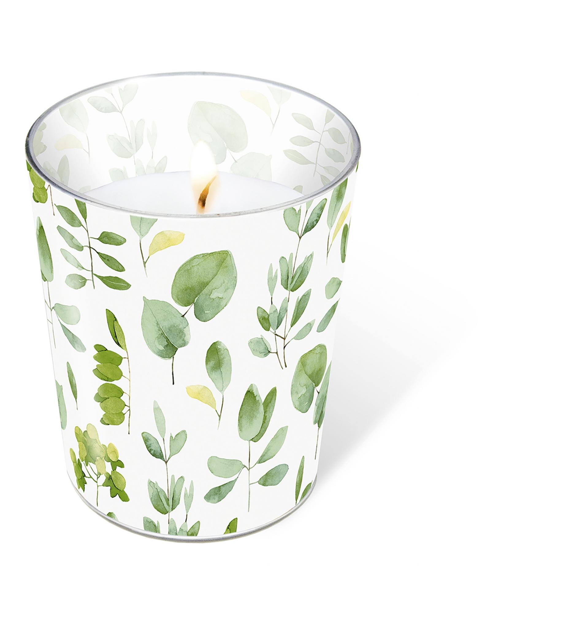 vela de vidrio - Fresh leaves