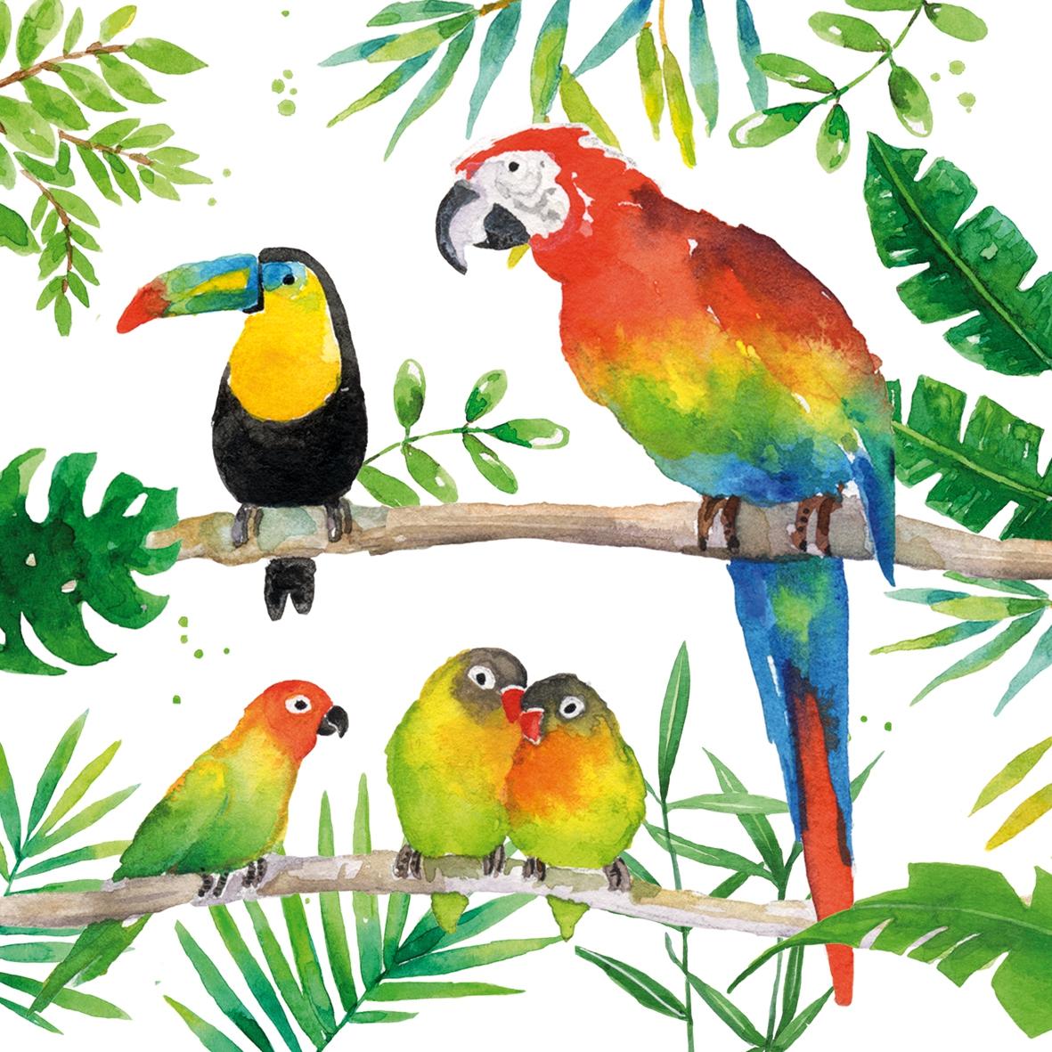 Servilletas 33x33 cm - Tropical Birds