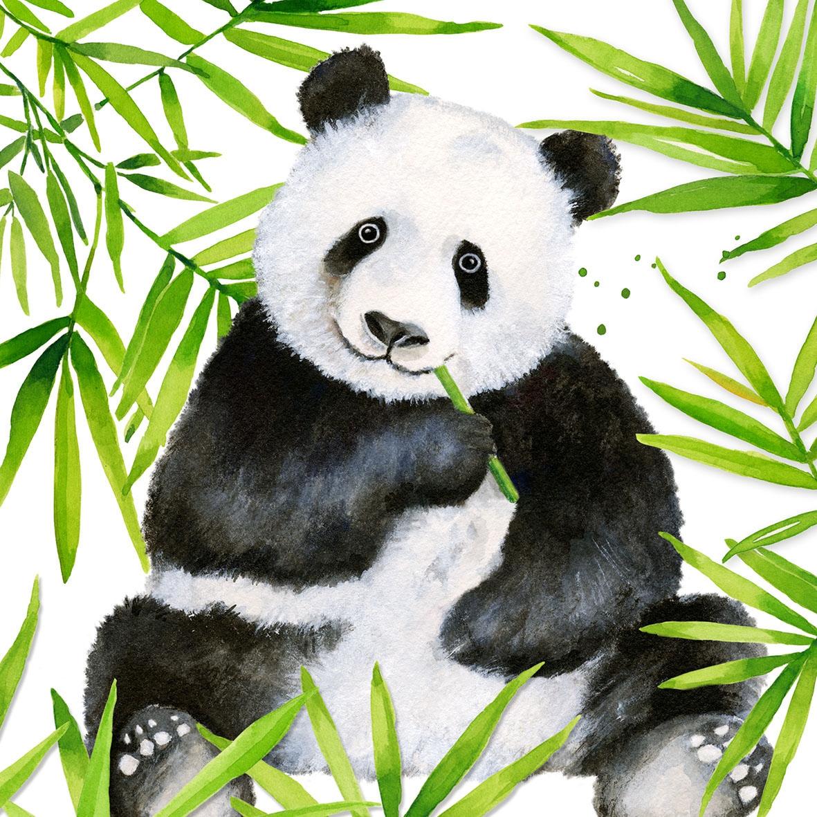 Servilletas 33x33 cm - Tropical Panda