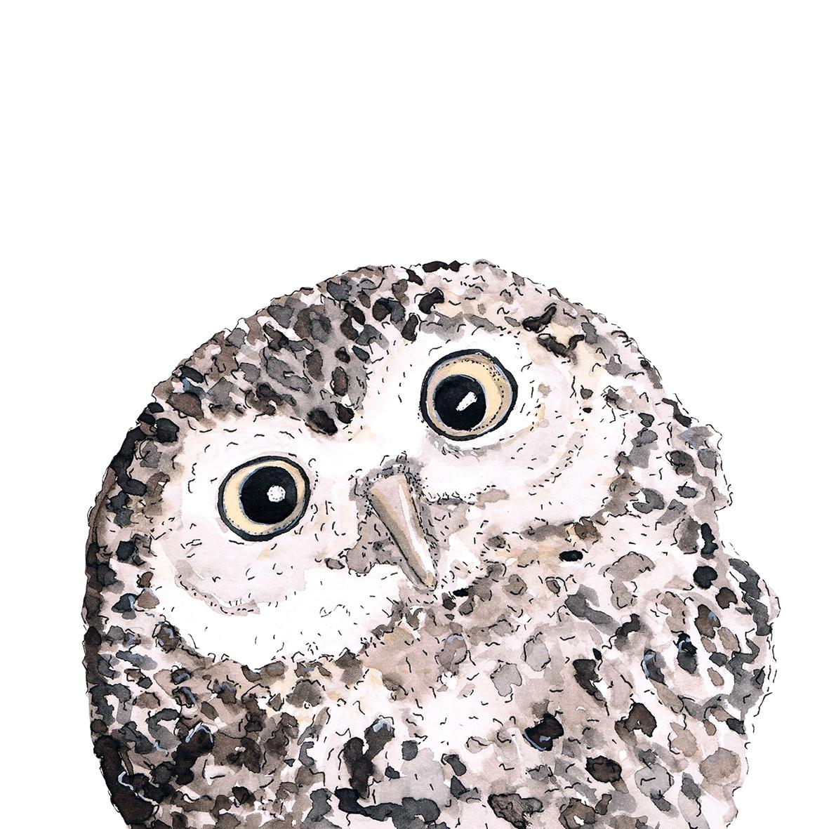 Servilletas 33x33 cm - Owl