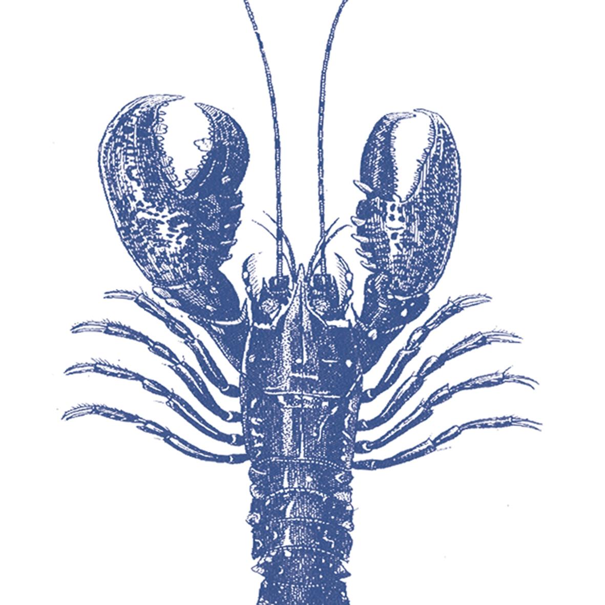Serwetki 33x33 cm - Lobster marine 33x33cm