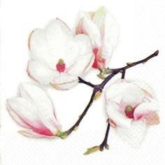 Napkins 24x24 cm - White Magnolia white