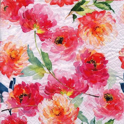 Napkins 24x24 cm - Summer Roses white