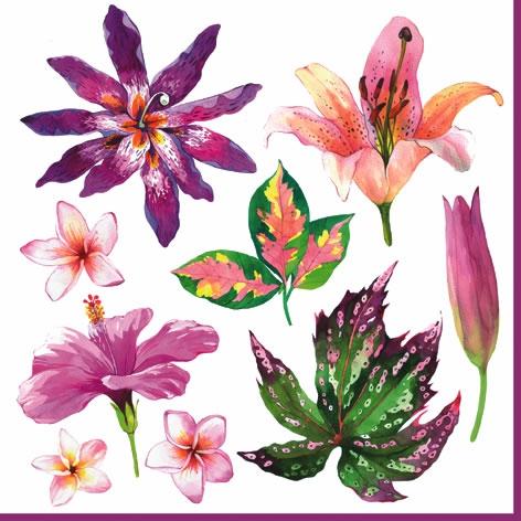 Serviettes 33x33 cm - Fleurs Tropicales