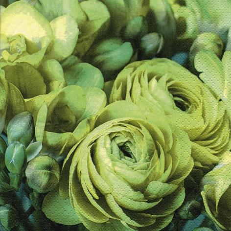 Napkins 33x33 cm - Freesia & Persian Buttercup green