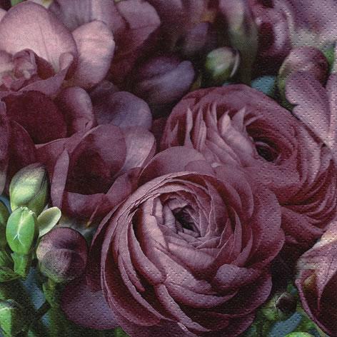 Napkins 33x33 cm - Freesia & Persian Buttercup burgundy