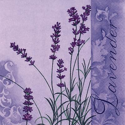 Napkins 33x33 cm - Scent of Lavender