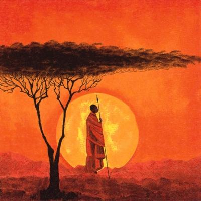 Napkins 33x33 cm - African Sunset