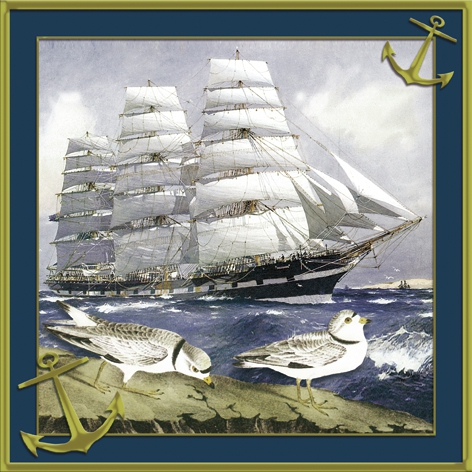 Napkins 33x33 cm - Windjammer