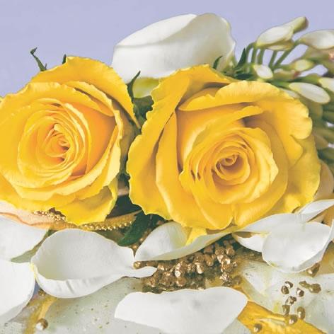 Napkins 33x33 cm - Petalos di Rosa